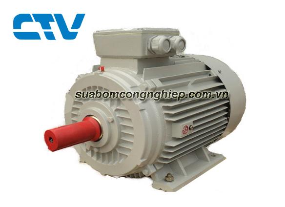 Động cơ máy bơm nước ESC