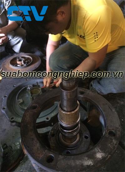 Thay phớt máy bơm công nghiệp nhanh chóng, uy tín tại Hà Nội
